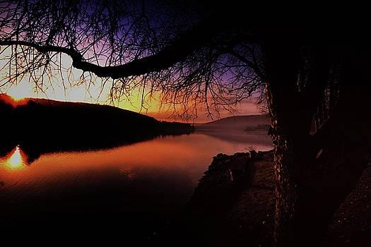 Crick Ain't Riz by Robert McCubbin