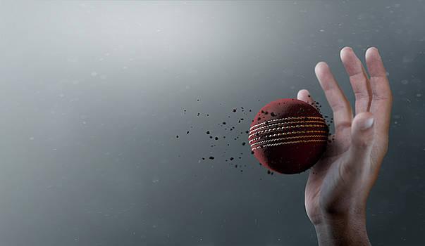 Cricket Ball In Flight by Allan Swart