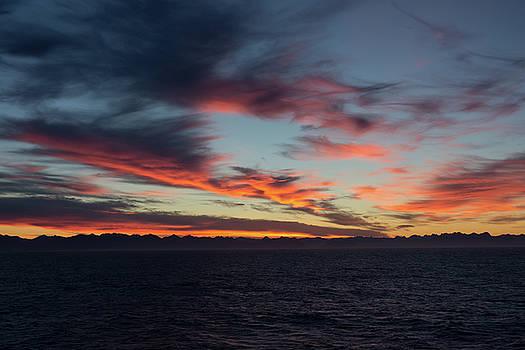 Crimson Morning by Allen Carroll