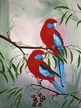 Crimson Rosella's by Debra Dickson