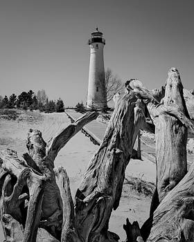 Crisp Point Lighthouse with driftwood by Kimberly Kotzian
