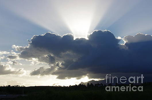 Crocodile Clouds Sunrays and Mt Bartle Frere FNQ  by Kerryn Madsen-Pietsch