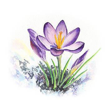 Irina Sztukowski - Crocus Flower by Irina Sztukowski
