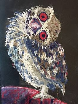 Crooked Owl by Cristel Mol-Dellepoort