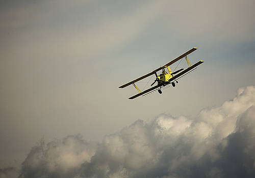 Crop Duster by Bob Cournoyer