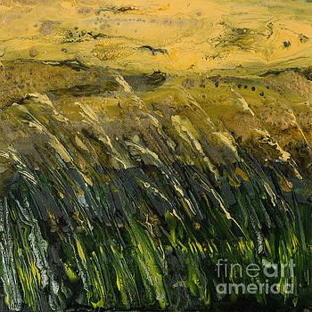 Crop field semi-abstract by Alexandra Kiczuk