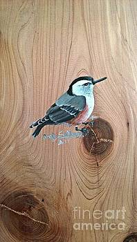 Cross Billed Nuthatch by Angie Sellars