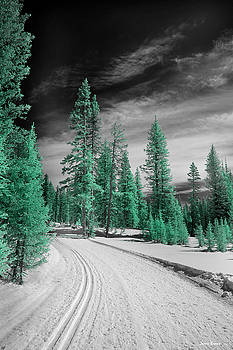 Cross Country Ski Path by Jamieson Brown