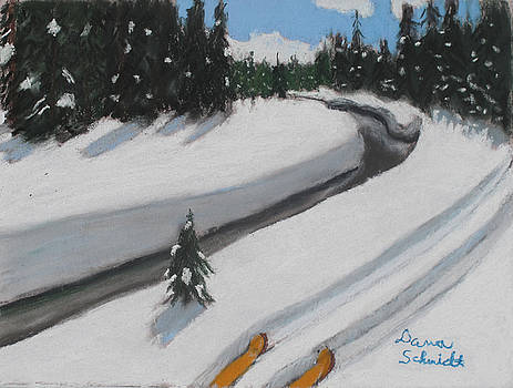 Cross Country Skiing Lone Star Geyser Trail in Yellowstone Nat. Park by Dana Schmidt