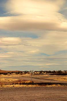 Susanne Van Hulst - Cross Road in New Mexico