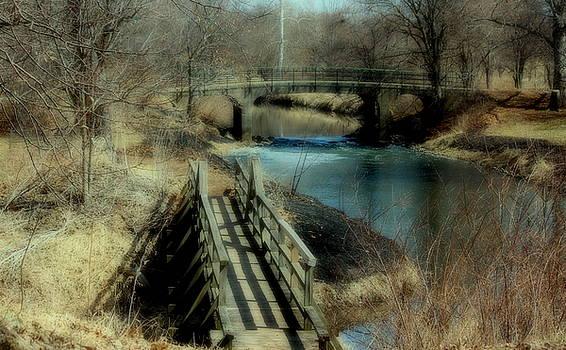 Rosanne Jordan - Crossing Bridges