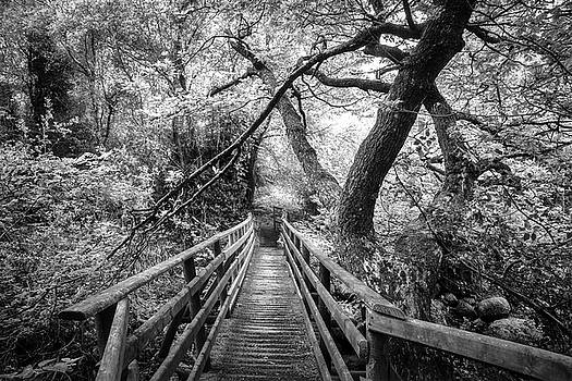 Debra and Dave Vanderlaan - Crossing the River Black and White