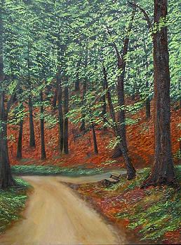 Crossroads by Sharon Steinhaus