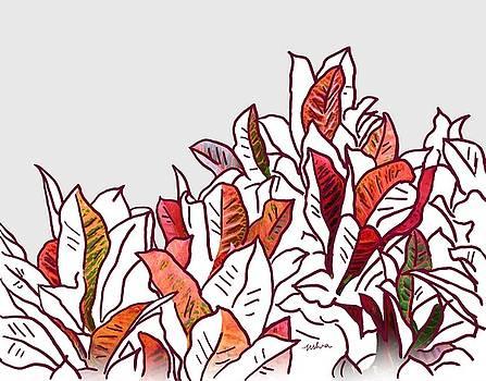 Usha Shantharam - Croton 8