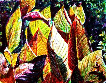 Usha Shantharam - Crotons Sunlit 2