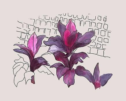 Crotons by Usha Shantharam