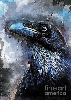 Crow art by Justyna JBJart