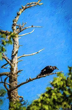 Crow in an Old Tree by Ken Morris