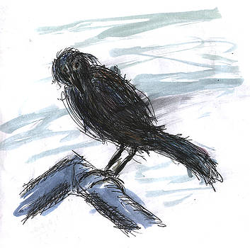 Kevin Callahan - Crow in the Wind