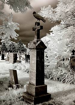 Crow On Cross In Rose Tinted Infrared by Gothicrow Images