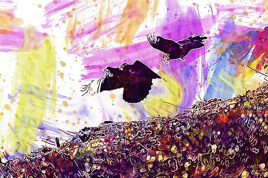 Crows Birds Rooks Black Animal  by PixBreak Art