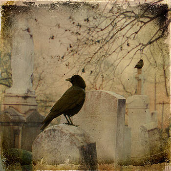 Crows In A Graveyard Blur by Gothicrow Images