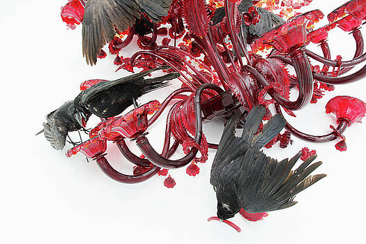 Crows Red Silicate Flowers One red worm 2 8282017 by David Frederick