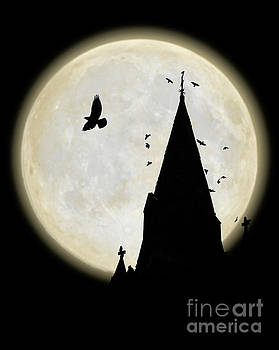 Crows circle a church spire at night by Mark Fearon