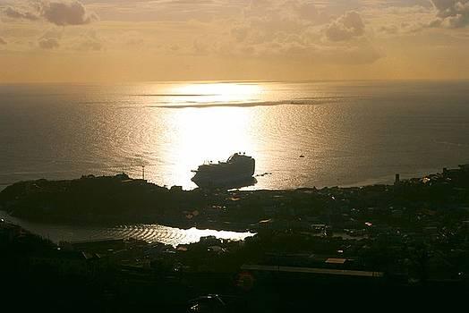 Gary Wonning - Cruise ship at Sunset