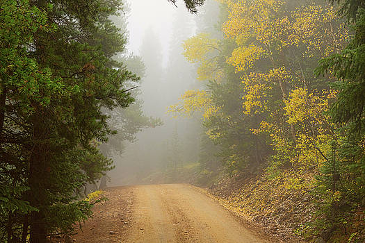 Cruising Into Autumn Fog by James BO Insogna