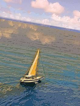 Larry E Lamb - Cruising the Caribbean
