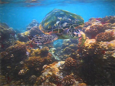 Susan Rissi Tregoning - Cruising the Reef