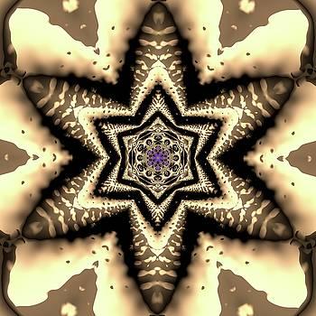 Crystal 6134 by Robert Thalmeier