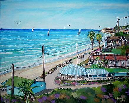 Crystal Cove Shoreline by Teresa Dominici