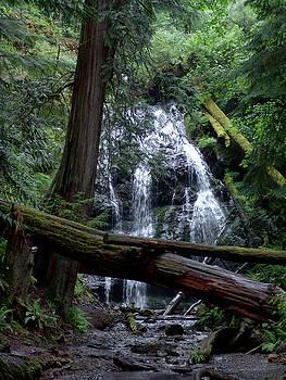 Crystal Falls by Carol Milisen