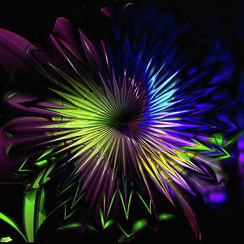 Kathy Kelly - Crystal Flower