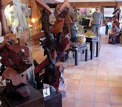 Crystal Fox Gallery Redwood Sculptures Display by Daryl Stokes