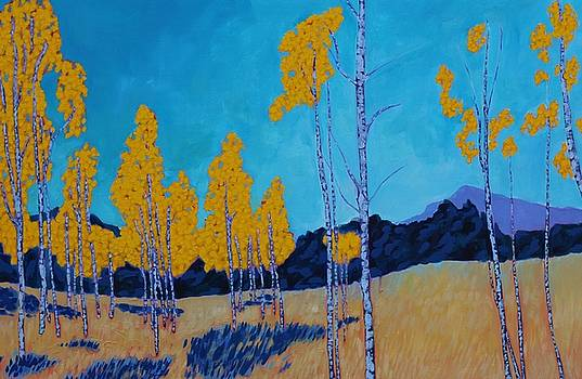 Crystal Peak Aspens  by Mackenzie Matthews