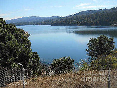 Crystal Springs by Marte Thompson