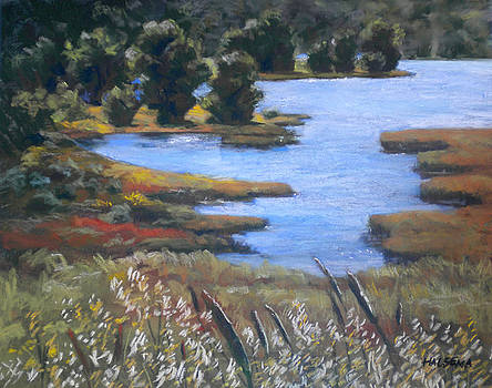 Crystal Springs Reservoir by Cheri Halsema
