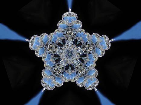 Crystal Star by Paul Sober