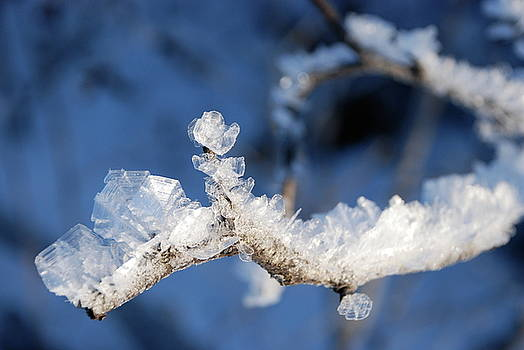 Crystalline Frost by BP Morris