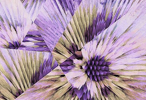 Susan Maxwell Schmidt - Crystallized Bloom