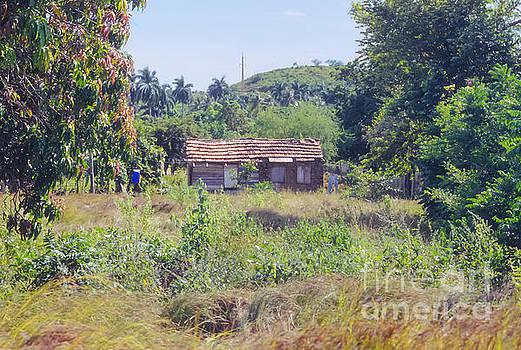 Bob Phillips - Cuban Farmhouse