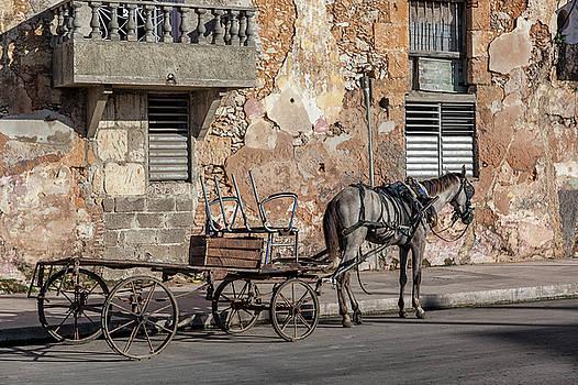 Erron - Cuban Horse Power FC