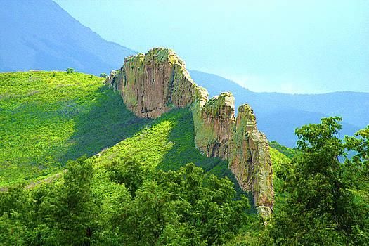 Cuchara Ridge by Marie Leslie