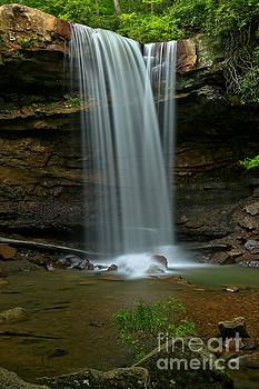 Adam Jewell - Cucmber Falls Crosing Streams