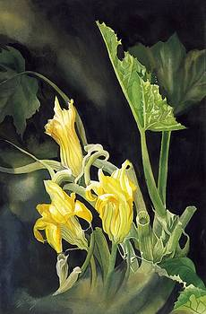 Alfred Ng - cucumber blossoms