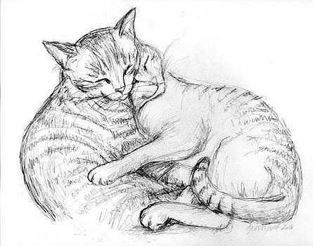 Cuddly Cats by Deborah Willard
