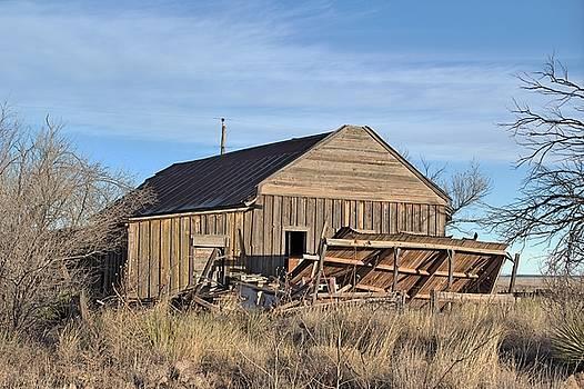 Cuervo Barn Ruins by Tom Winfield
